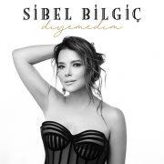 Sibel Bilgiç 20 yıl aradan sonra müziğe geri döndü…